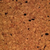 Cork Flooring APC Neptune Natural